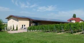 Weinlagerhalle Weingut Manz : 55278 Weinolsheim