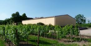 Weinlagerhalle Weingut Gehring 55283 Nierstein am Rhein