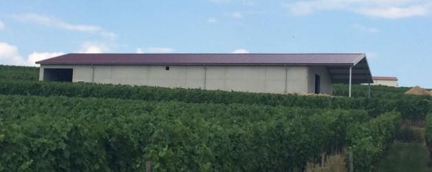 Weingut Bettenheimer aus 55218 Ingelheim am Rhein   02.07.2014