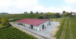 Weingut Dexheimer aus 55288 Spiesheim