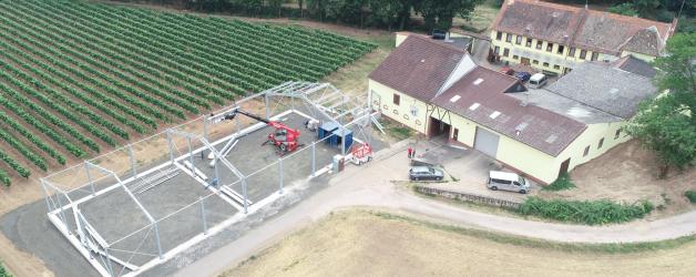 Weingut Milch aus 67590 Monsheim  13.08.2020