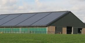 Boxenlaufstall mit Solaranlage